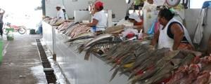 Muy poco frecuentado se vio ayer miércoles de ceniza el pabellón del pescado del mercado de Valledupar.