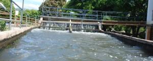 La bocatoma del sistema de acueducto debió cerrarse para hacer limpieza en la zona.