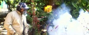 La fumigación contra el mosquito Aedes Aegypti se realizó en 130 casas del corregimiento Atánquez, al norte de Valledupar.