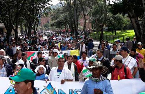Huila, Meta, Tolima y Casanare marchan por la crisis arrocera