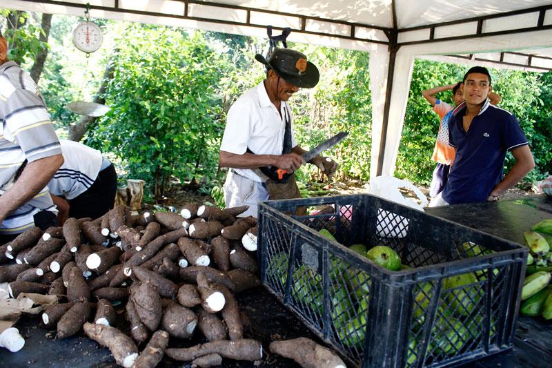 Habitantes del asentamiento y otros provenientes del casco urbano llegaron a comprar los diferentes productos que se ofrecieron en este mercado campesino.