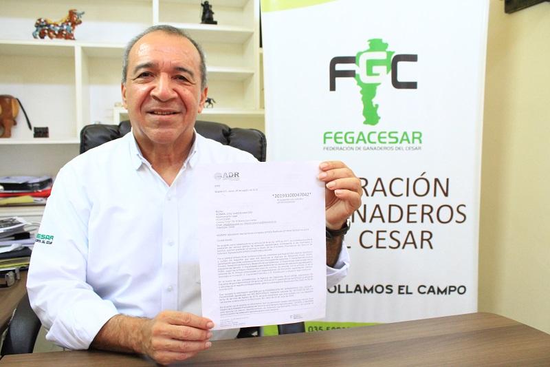 Julio Cesar Lozano Mejía, director ejecutivo de Fegacesar.   Foto:Cortesía.