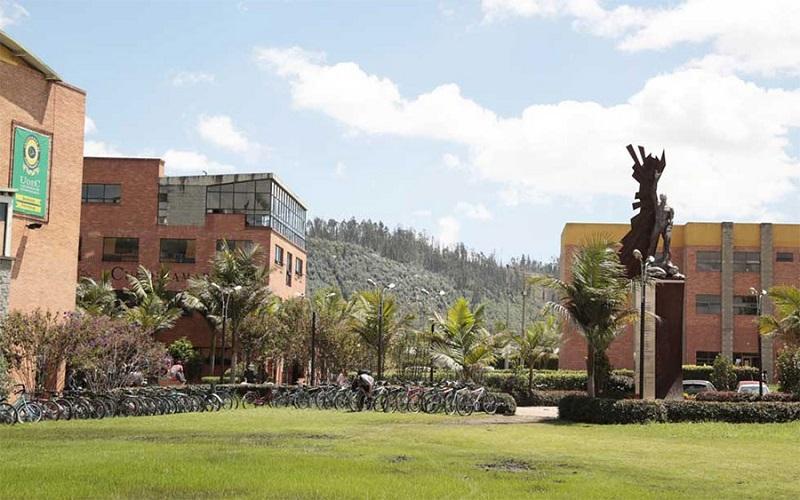 Universidad de Cundinamarca.
